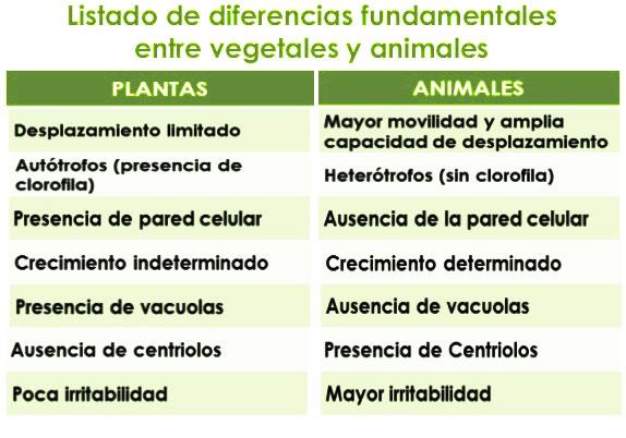 En qué se diferencia el reino vegetal del reino animal