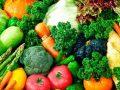 Utilidades que ofrece al ser humano el reino vegetal