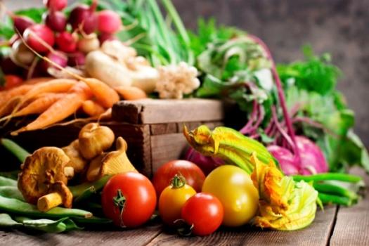 ¿Qué es un vegetal?