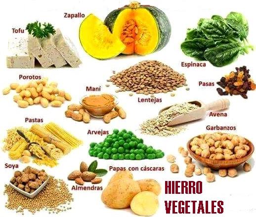 Alimentos vegetales ricos en hierro