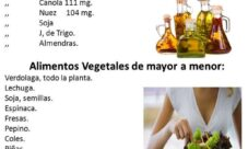 Alimentos vegetales con omega 3