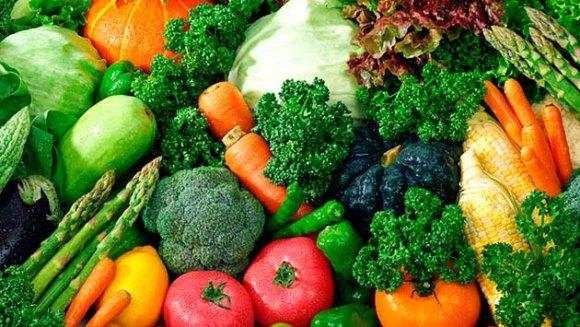 ¿Qué son los vegetales?