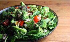 ¿Qué son las proteínas vegetales y dónde se encuentran?